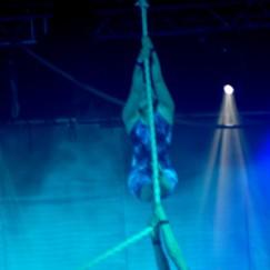 Aerial_duet1e.jpg