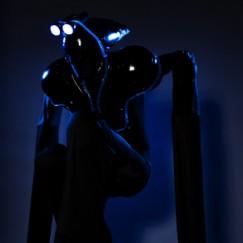 Blackbeam-crouched.jpg