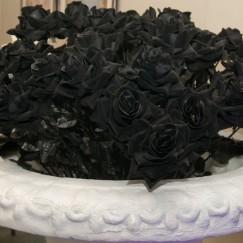 Blackflowers.jpg