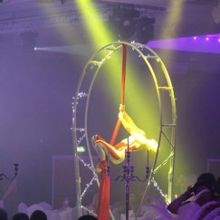 Carousel-Revolving-Aerial-Rig6.JPG