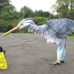 Heron2.jpg