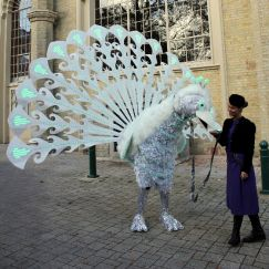Power Peacocks / Birds