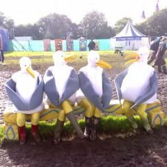 Seagulls25.jpg