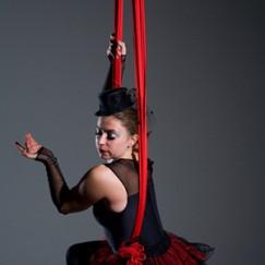 Zu Aerial Dance