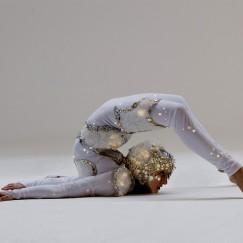 Silver_contortion.jpg