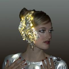 costume-silver-light-head-dressCompany.jpg