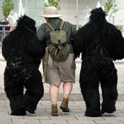 creature_gorillawalk2.jpg