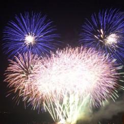 firework12.jpg