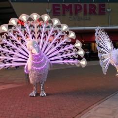 peacocks_costume1.jpg