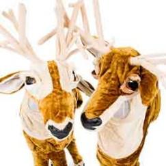 reindeer3.webjpg.jpg