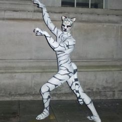 White Tiger - Body Painted Animal