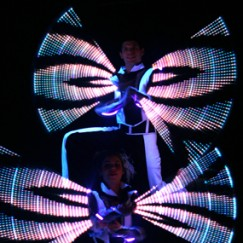 wings_Light_digital_Performers.JPG