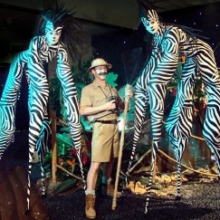 Stilt Walkers - Zebras 1
