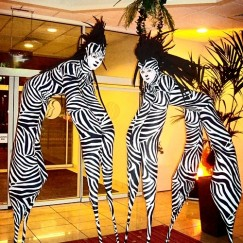 Stilt Walkers - Zebras 2