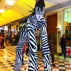Stilt Walkers - Zebras 4