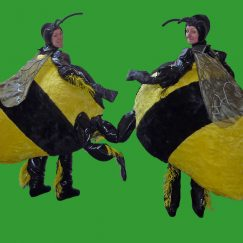 bumble-bee-roving-act-mb