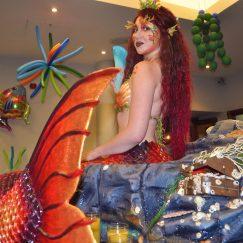 Mermaid2(s)
