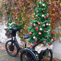Christmas Tricycle rear