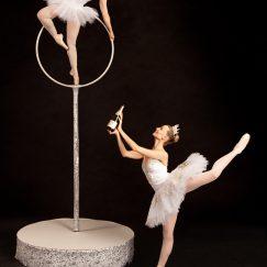 La Luna Ballet Company Champagne(11)
