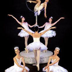 La Luna Ballet Company LED (3)