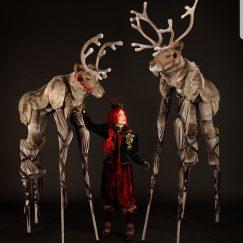 deer_elf