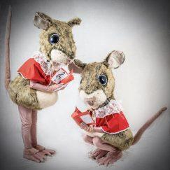 mouse 2 low res copy