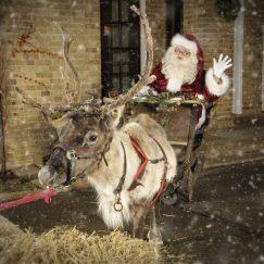 Celebrity Santa with Reindeer - Rachel Munslow